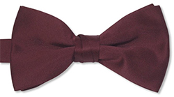 11th Doctor's Bowtie
